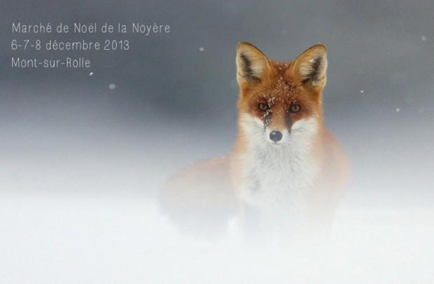© Marché de Noël de la Noyere - Mont sur Rolle