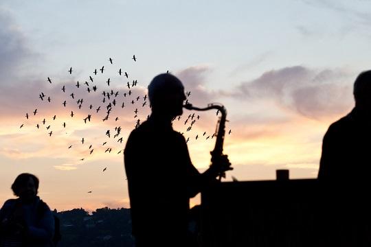 Aubes Musicales © Ville de Genève