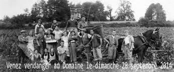 © Domaine de la Ville de Morges (VD)