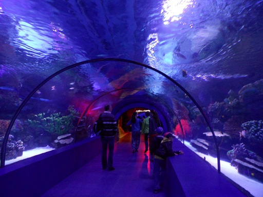 The Aquarium in Antalya. Photo © genevafamilydiaries.net