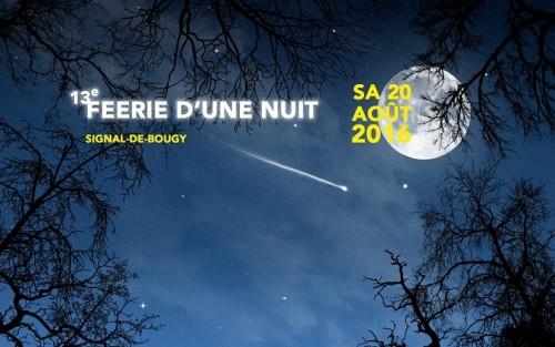 Féerie d'une Nuit © 2016 Parc Pré Vert Signal de Bougy